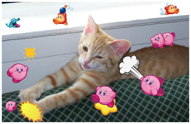 Kirby's VS Minx